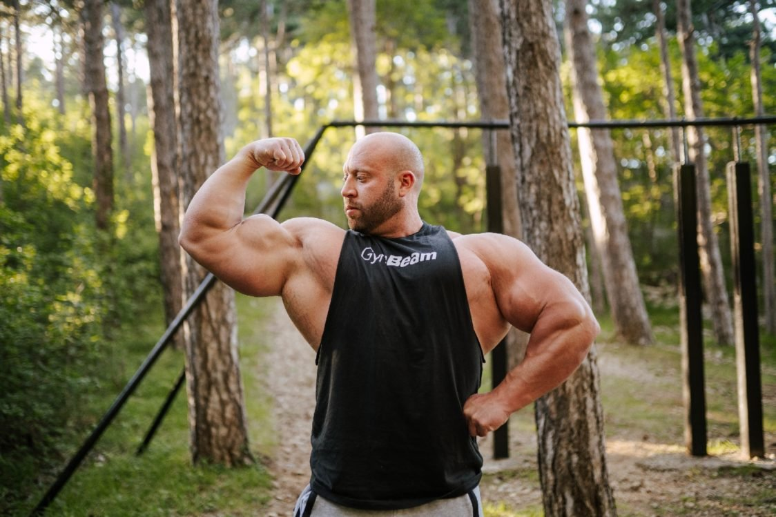 Hormones and muscle growth
