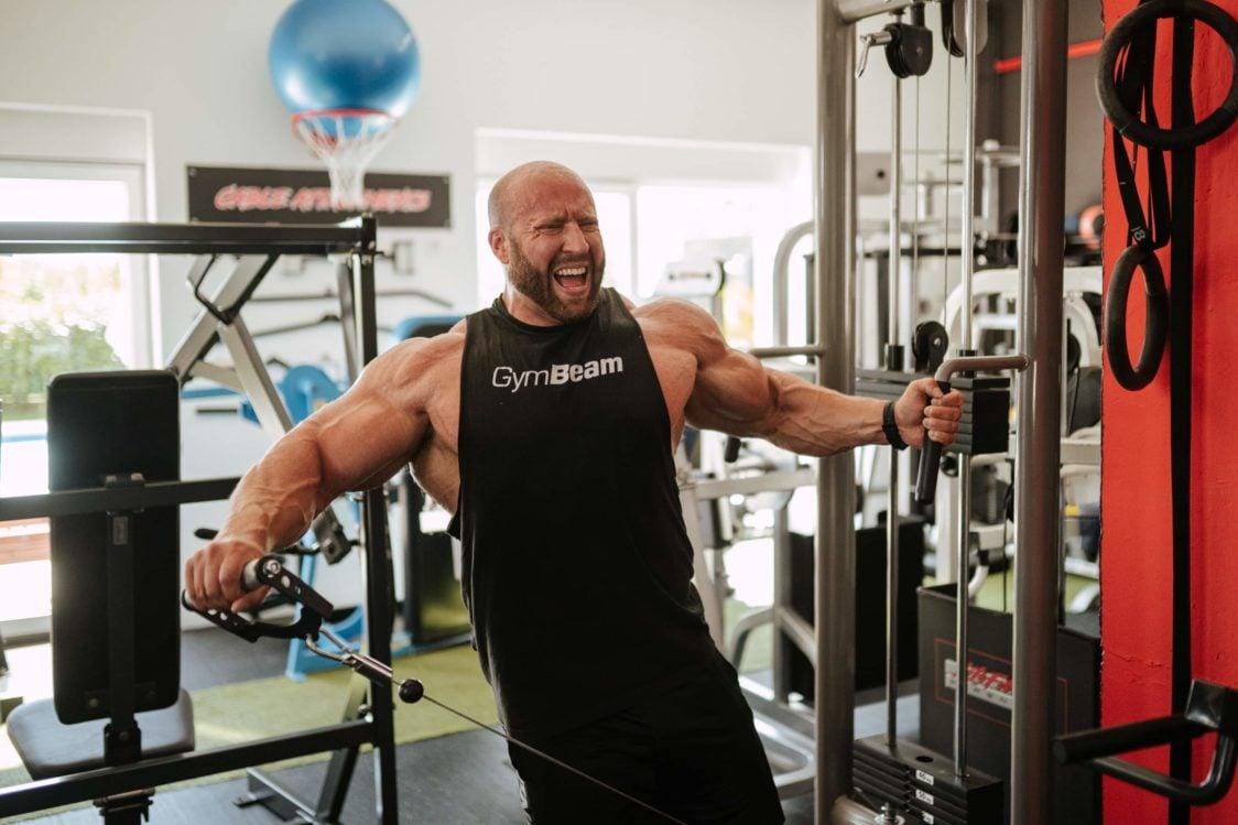 Febra musculară și creșterea masei musculare