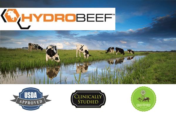 beef&egg amino - aminokyseliny z hovädzieho mäsa a vaječných bielok