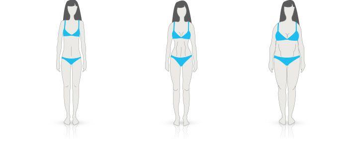 telesný typ ženy ektomorf, mezomorf a endomorf