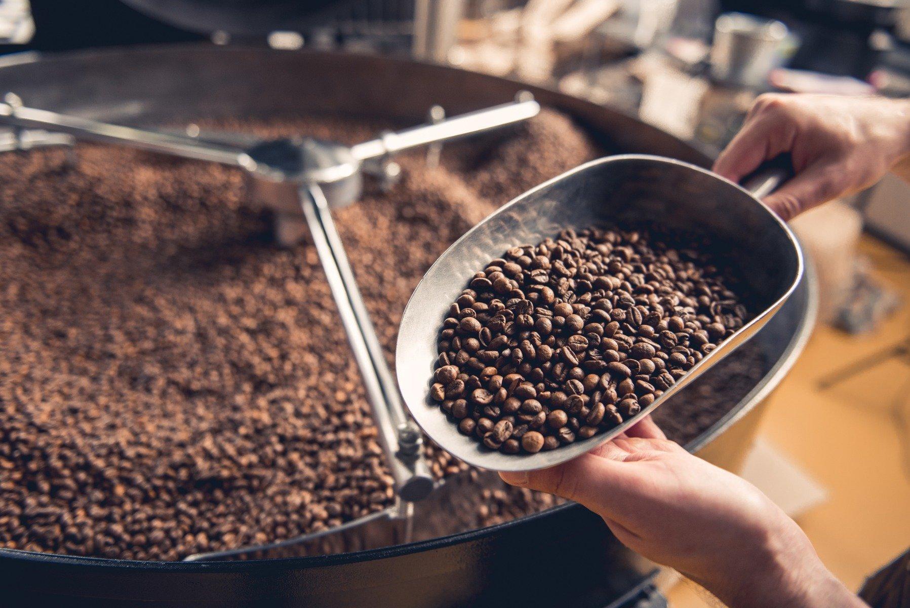 Kofein a předtréninkové stimulanty
