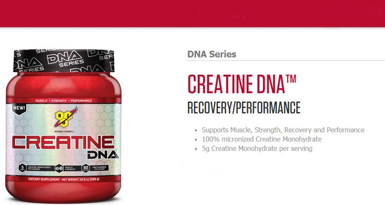 Kreatín DNA