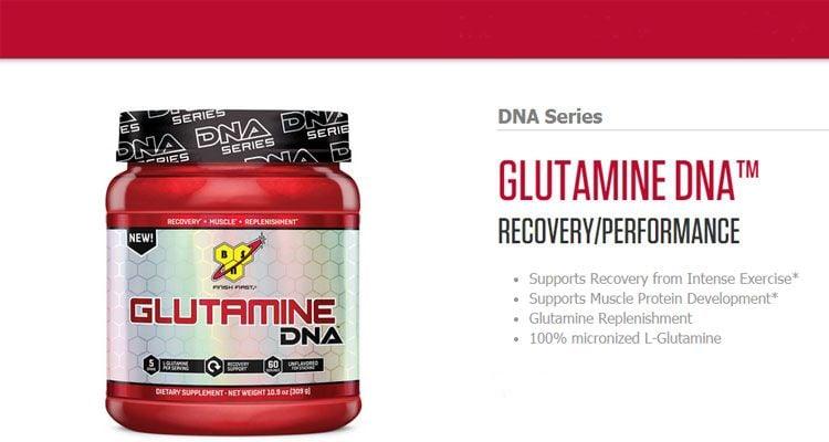 glutamine DNA BSN