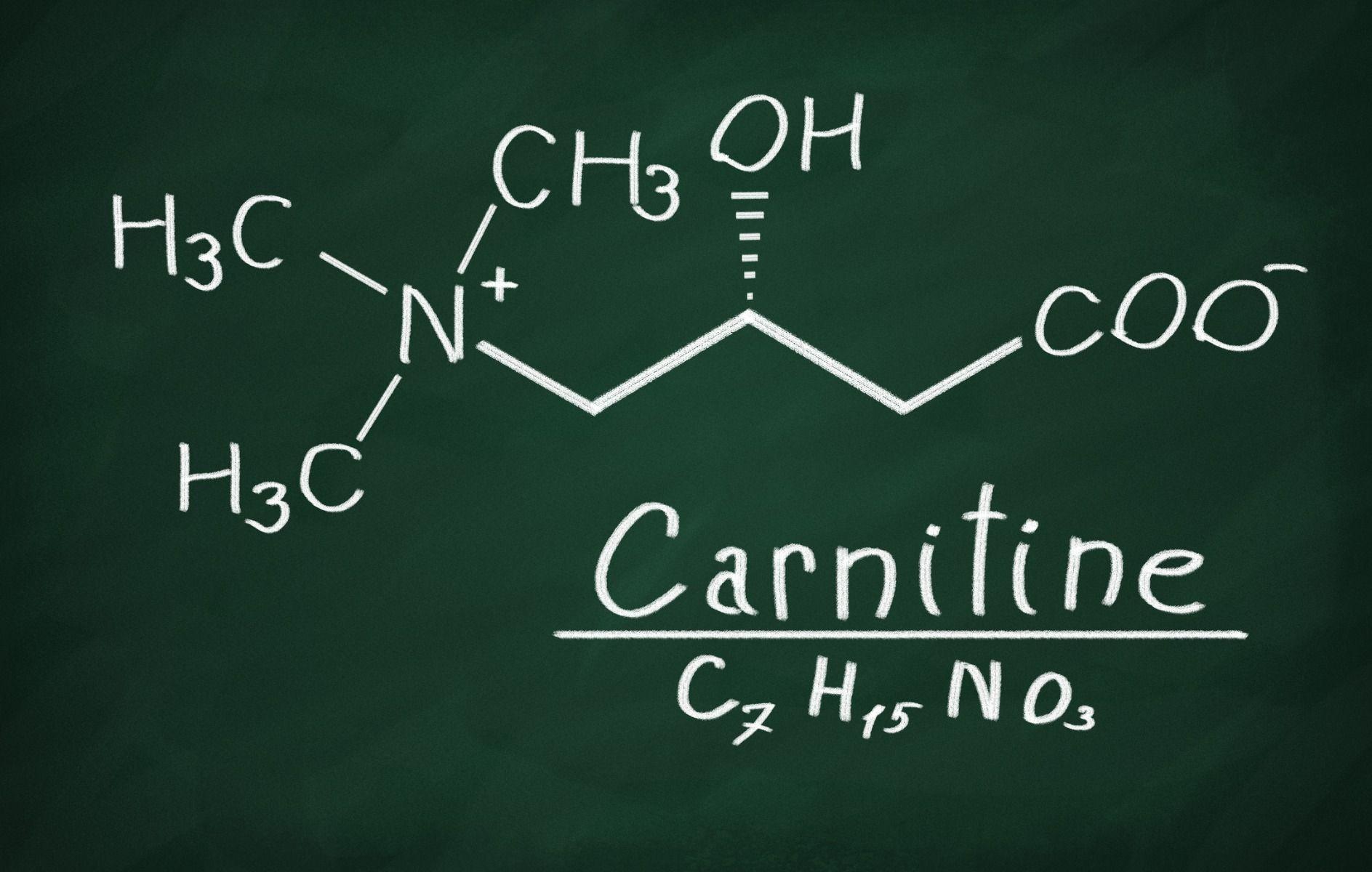 Az L-karnitin kiegészítése