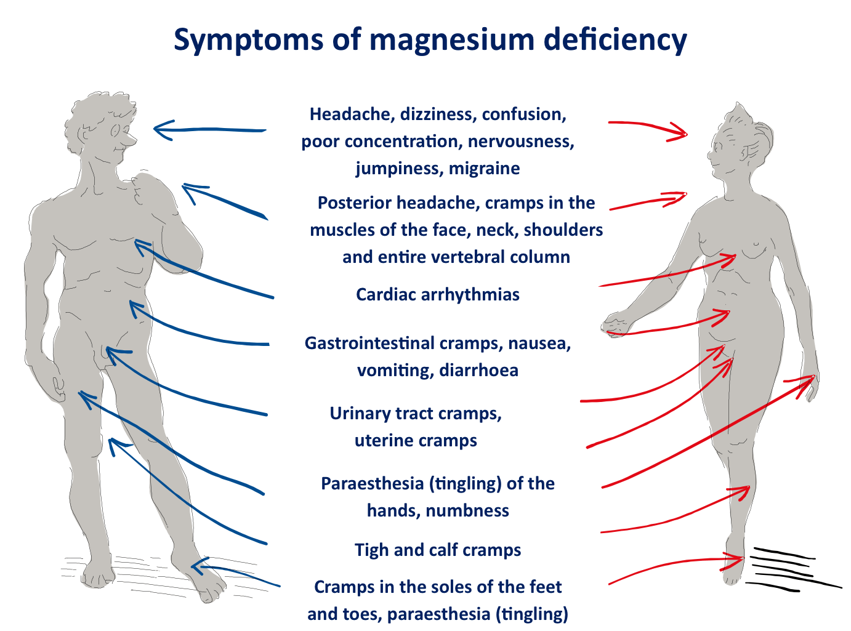 magnézium horčík nedostatok