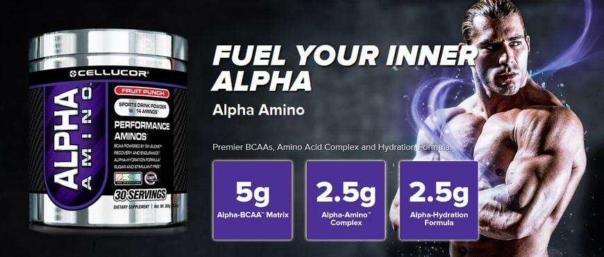 alpha amino cellulor