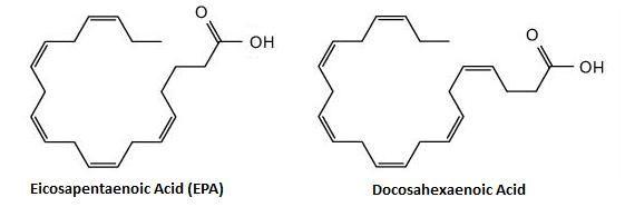 Rybí olej - štruktúra