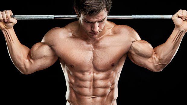 ZMB6 pomáha nabrať svaly