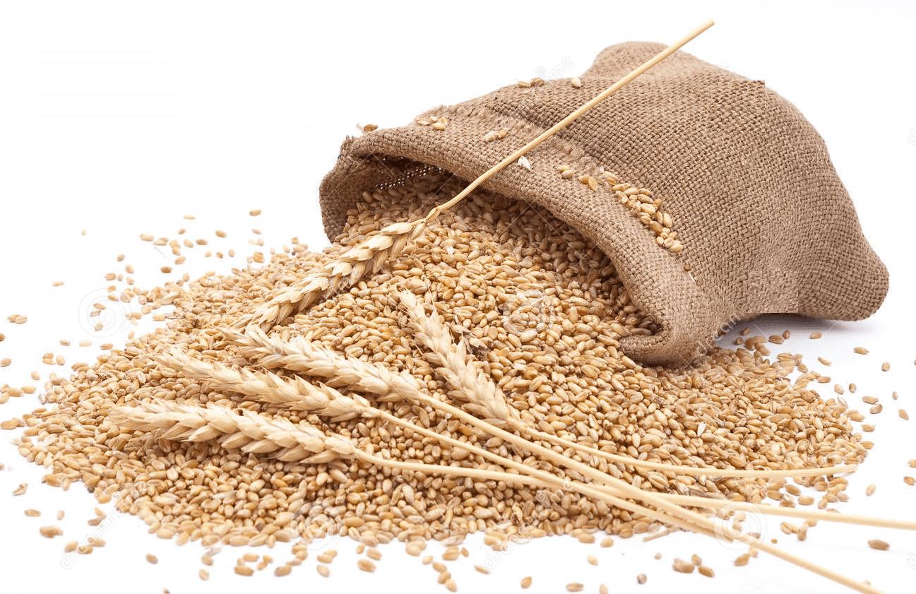 Maltodextrín zo pšenice