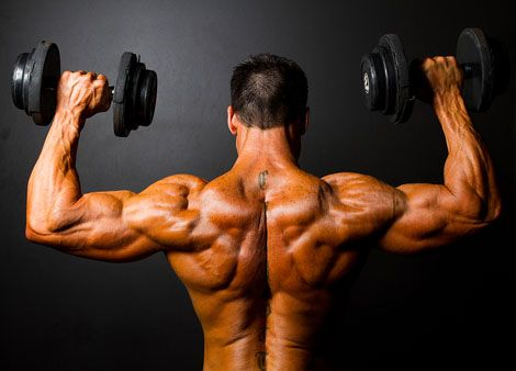 signály nedostatku proteínu, svaly
