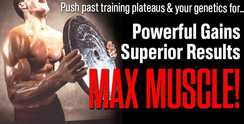max muscle gymbeam