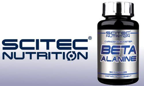 beta-alanín scitec