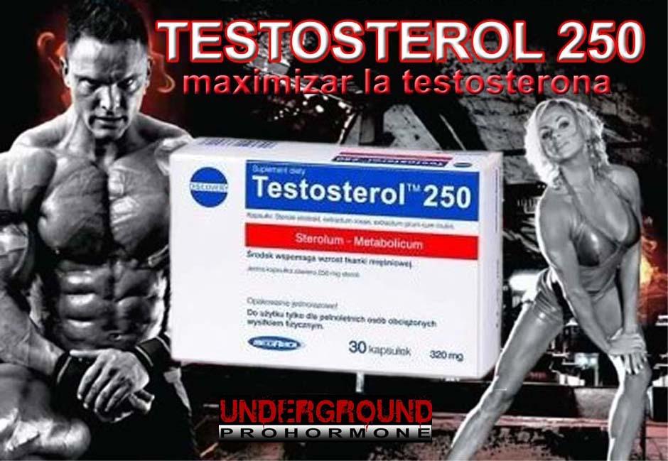testosterol prírodný anabolizér