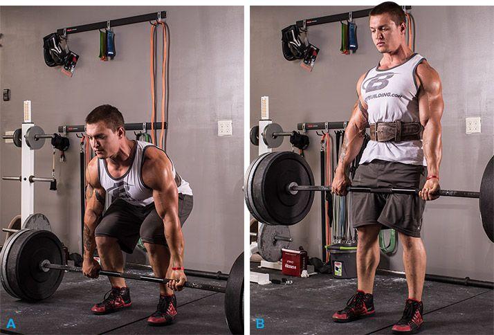 Fitness opasek Frank - GymBeam